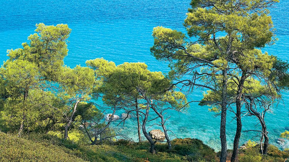 kassandra peninsula chalkidiki greece